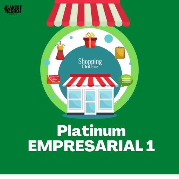 plan de marketing digital platinum empresarial 1