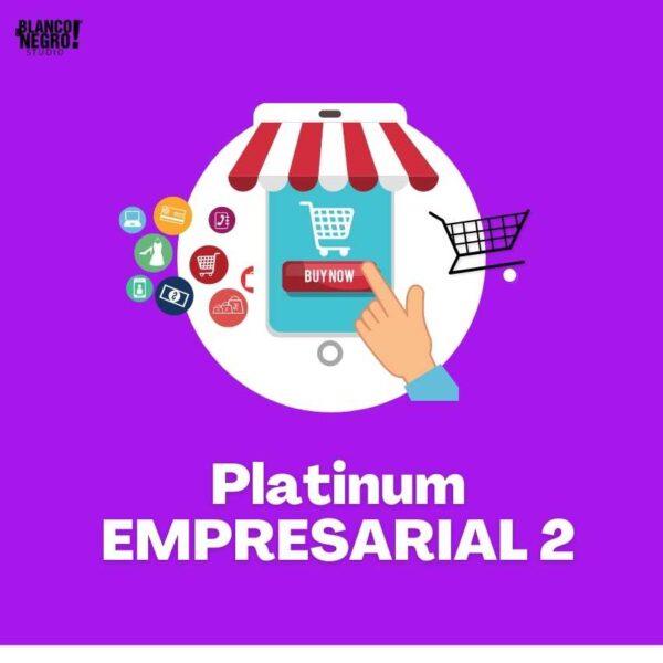 Plan de marketing digital platinum 2